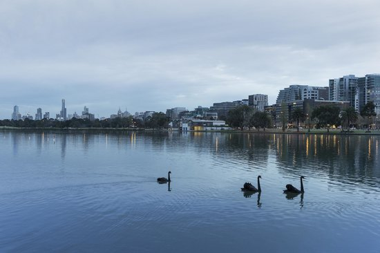 Mercure Melbourne Albert Park : Albert Park Lake