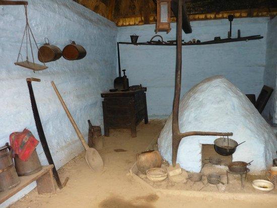 Cartisoara, Romania: Badea Cartan Museum , traditional romanian house