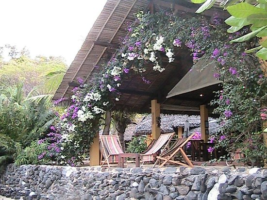 Sakatia Lodge: One of the many magnificent Bouganvilleas