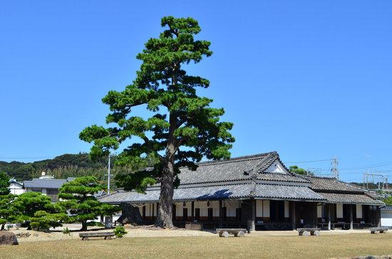 Arai Sekisho