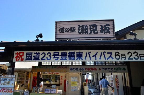Michi-no-Eki Shiomizaka : 道の駅潮見坂