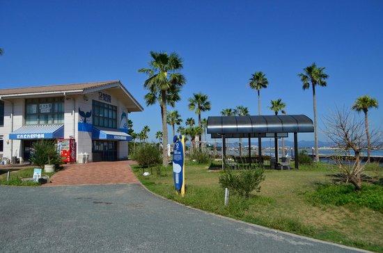 Arai Beach: 新居弁天海浜公園