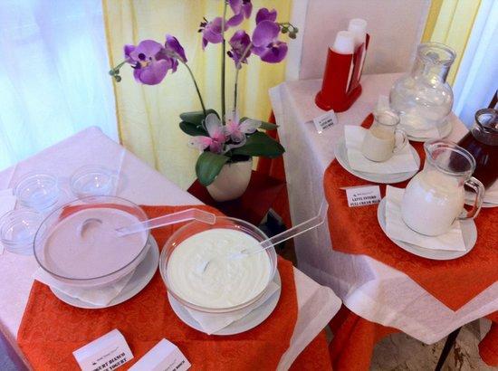 Hotel Stresa: Colori e fiori