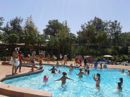 Club Salima: entertainment team - pool dance