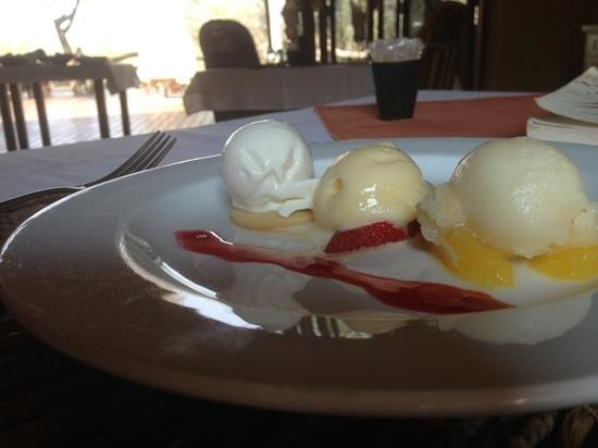 Sanctuary Makanyane Safari Lodge: sorbet on a hot summers day
