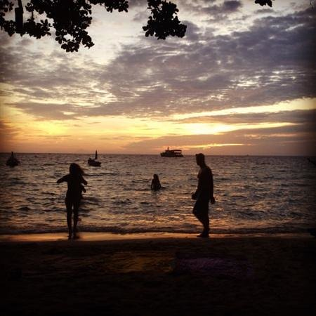Koh Tao Backpackers Hostel : koh tao beach