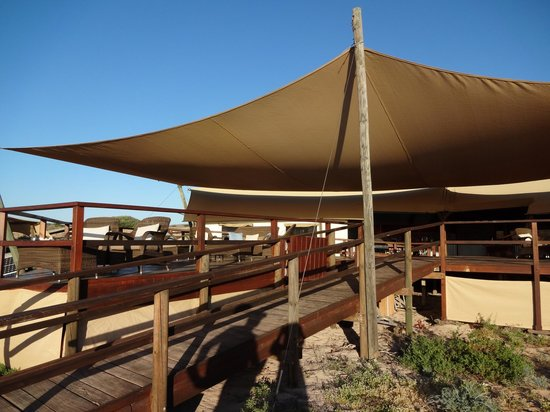 Sal Salis Ningaloo Reef: Dining and communal area