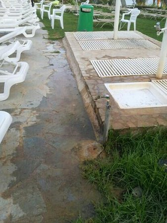 Ascos Coral Beach Hotel: no comments very dirty!! the showers are out of this world!!