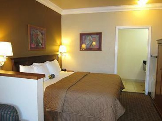 Comfort Inn & Suites San Francisco  Airport North: ベッド
