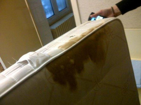 Grand Hotel du Havre : Mes nuits auraient été douce...