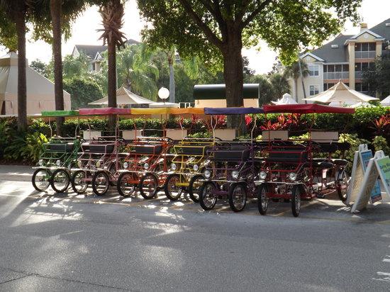 Sheraton Vistana Resort - Lake Buena Vista: Surrey bikes for rent at Cascades recreation center