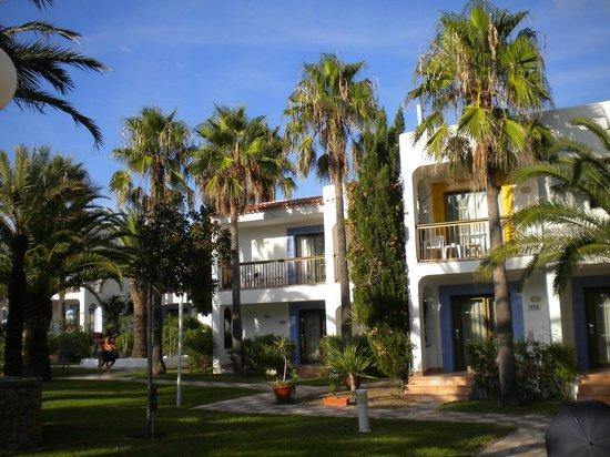 Insotel Hotel Formentera Playa : jardins/piscine, studios