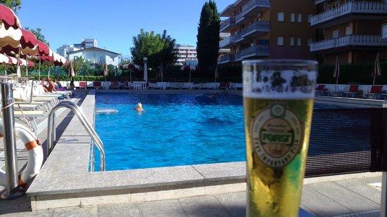 Hotel al Cigno: Chilling at the pool