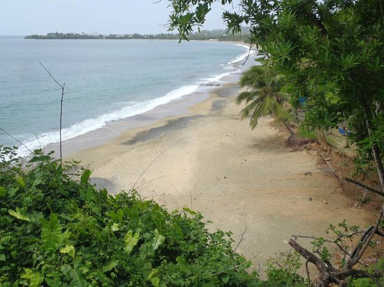 Grafton Beach Resort: Secluded beaches. This is Turtle Beach