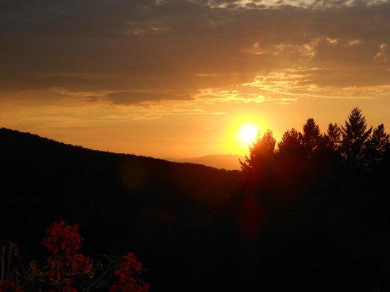 Landhotel Gruner Baum Sehringen: Sunset from terrace