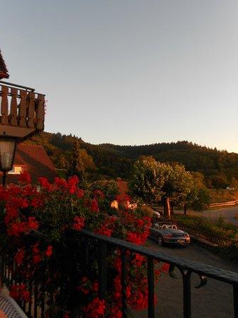 Landhotel Gruner Baum Sehringen: Terrace view