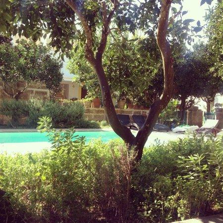 Palazzo Guglielmo Albergo Diffuso: View of the pool