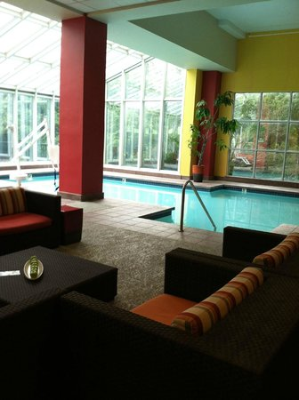 Renaissance Austin Hotel: Indoor Pool