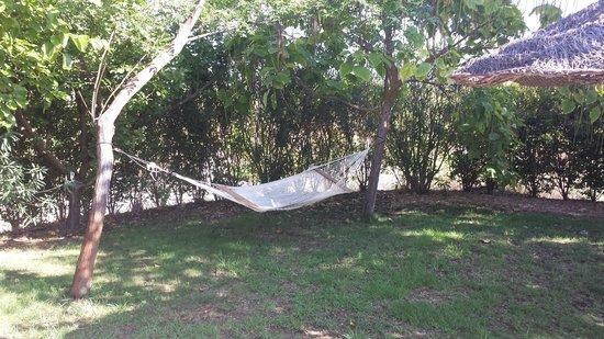 Hotel Rural La Paloma : Poolside Hammock