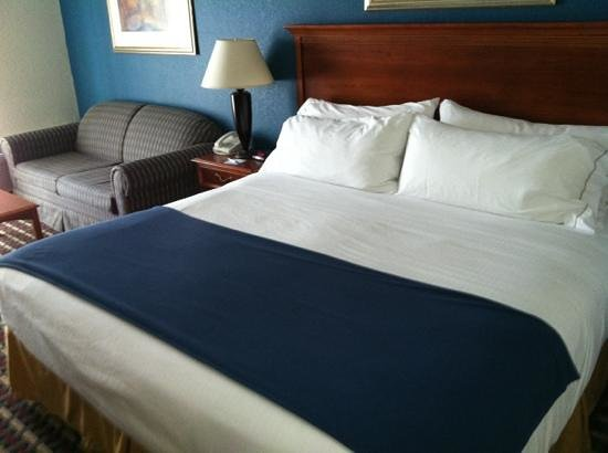 Holiday Inn Express Hotel & Suites Petoskey : king bed with sitting area