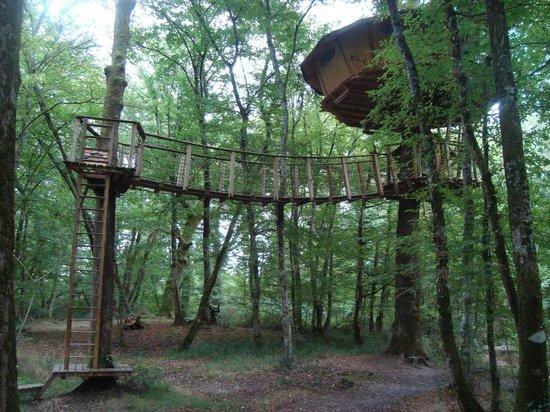 Natura Cabana : cabane estuaire vue d'en bas