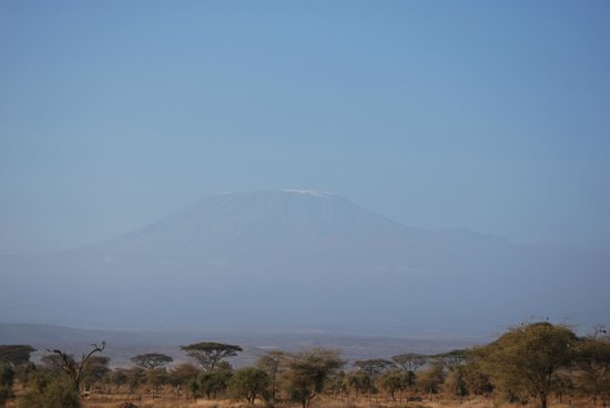 Sentrim Amboseli