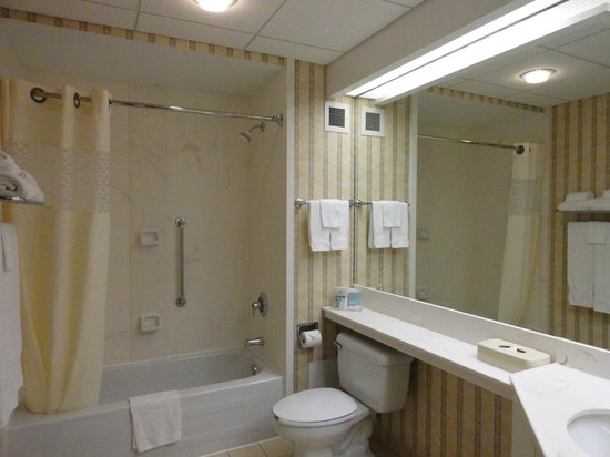 Hampton Inn by Hilton Ottawa: Big, clean bathroom