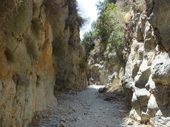 Imbros Gorge: très belle randonnée