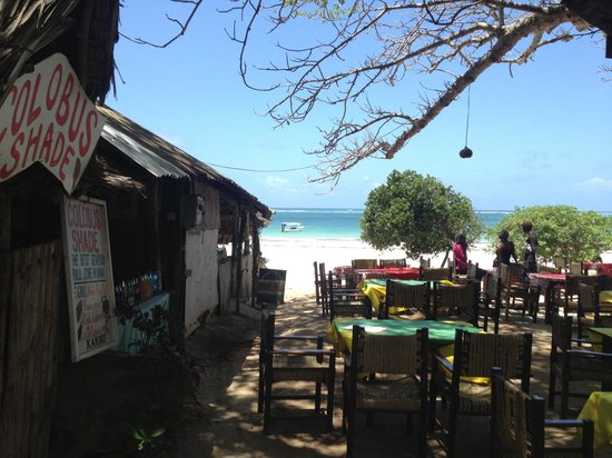 Colobus Shade: Open Air Resturant