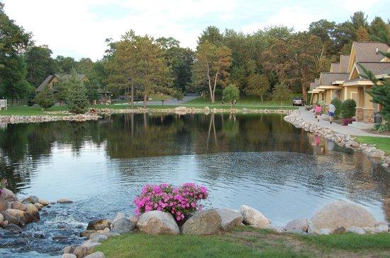 Kavanaugh's Sylvan Lake Resort : Resort grounds