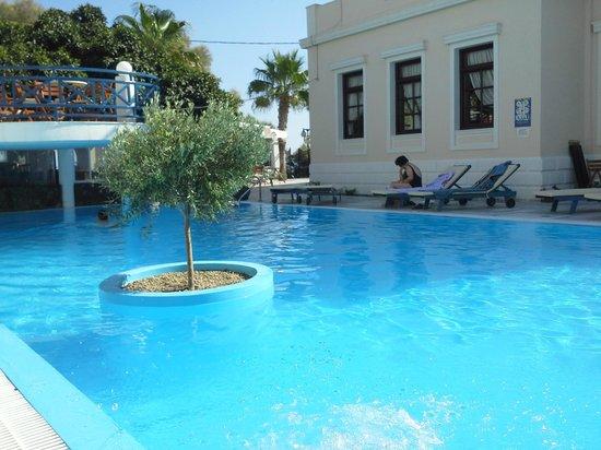 Veggera Hotel: Veggera Olive tree pool