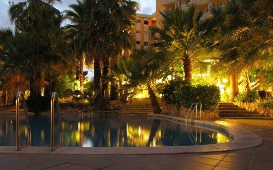 Senses Palmanova: The garden and pool at night