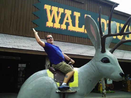 Wall Drug Store Cafe: Riding the wild Jackalope