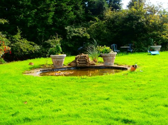 Ackroyd House: Garden