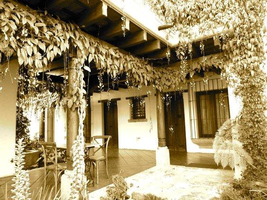 Hotel Cirilo : Outside