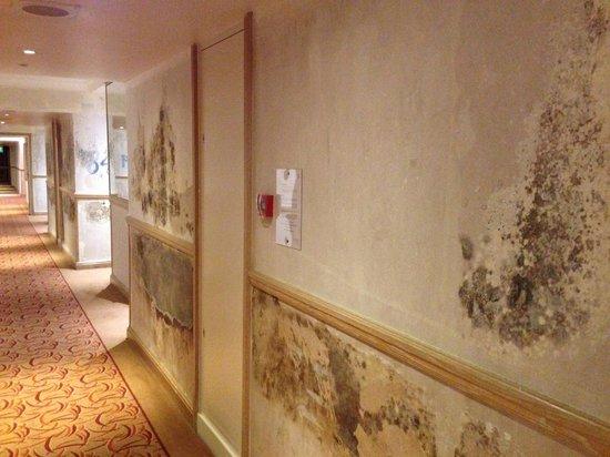 Sheraton Skyline Hotel London Heathrow : renovation 1