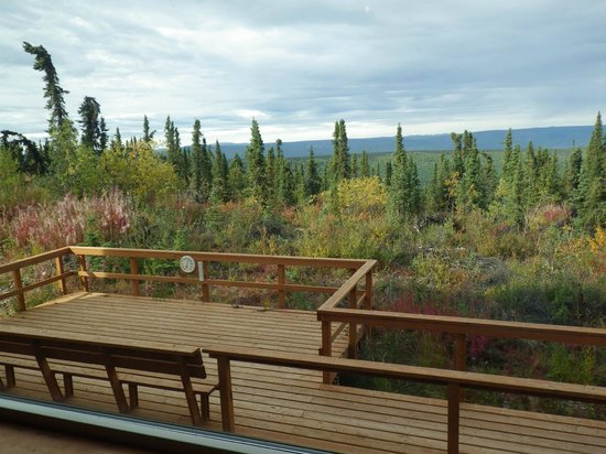Aurora Borealis Lodge: This is what you will see out of your window.