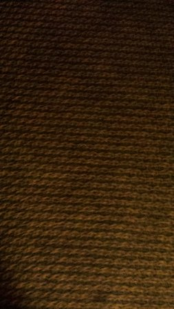 Red Lion Hotel Kalispell: vomit carpet