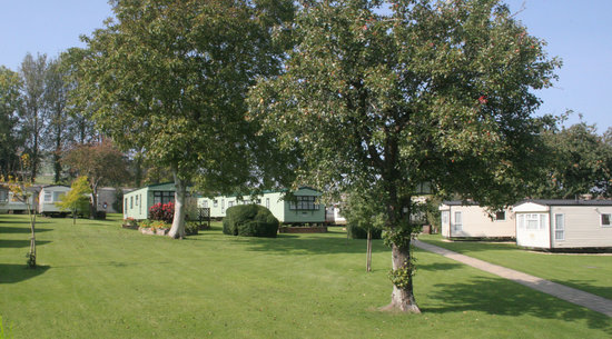 Appuldurcombe Gardens Holiday Park: Orchard static area