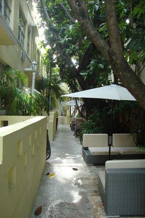 Villa Paradiso : Pathway