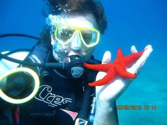 Ethos Dalyan Dive: Look at this :)