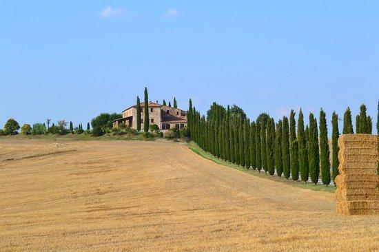 Bagno vignoni picture of val d 39 orcia tuscany tripadvisor - Agriturismo bagno vignoni ...