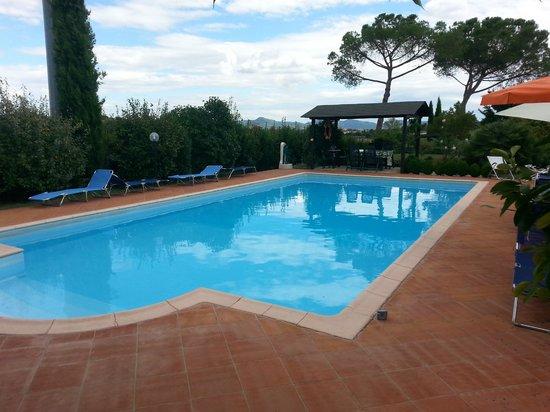 Holiday House Podere Pescia: piscina
