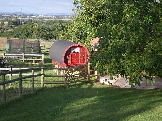 Huntstile Organic Farm: Gypsy from a distance