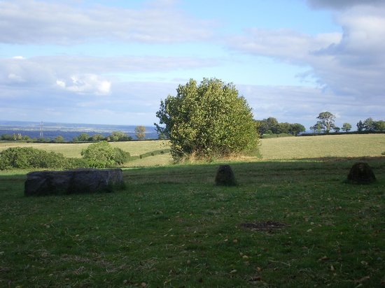 Huntstile Organic Farm: Stone circle walk view