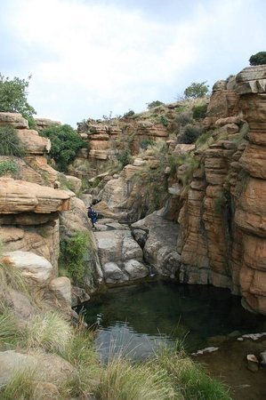 Mountain Sanctuary Park: Natural Swimming Pool