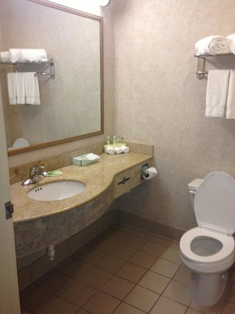 Holiday Inn Express Hotel & Suites Boston-Marlboro : Bathroom