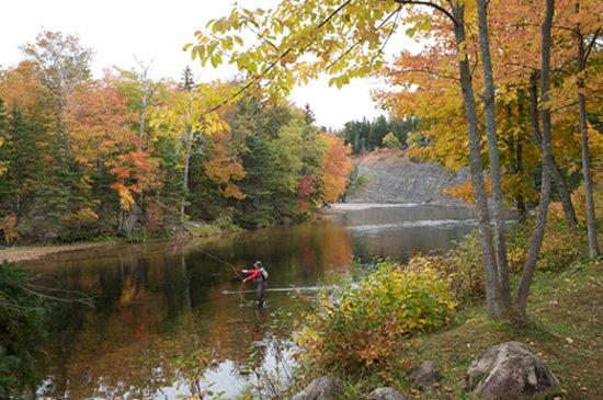 Nova Scotia, Canada: Fishing