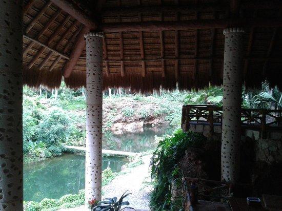 Puerto Morelos Adventure: Xenote K'áak