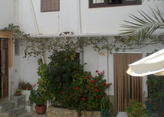 Tasca Moraira: a view from the outdoor seating area